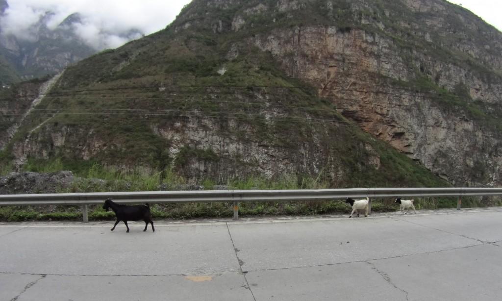 Biquettes route Hanyuan