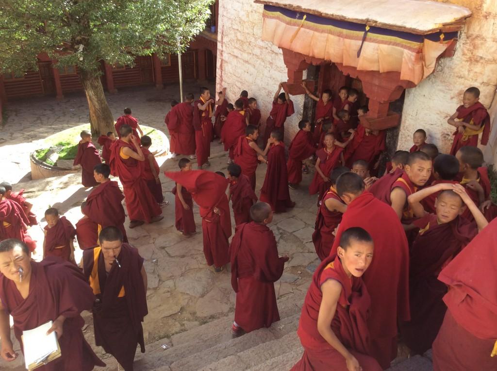Moines enfants monastère Litang