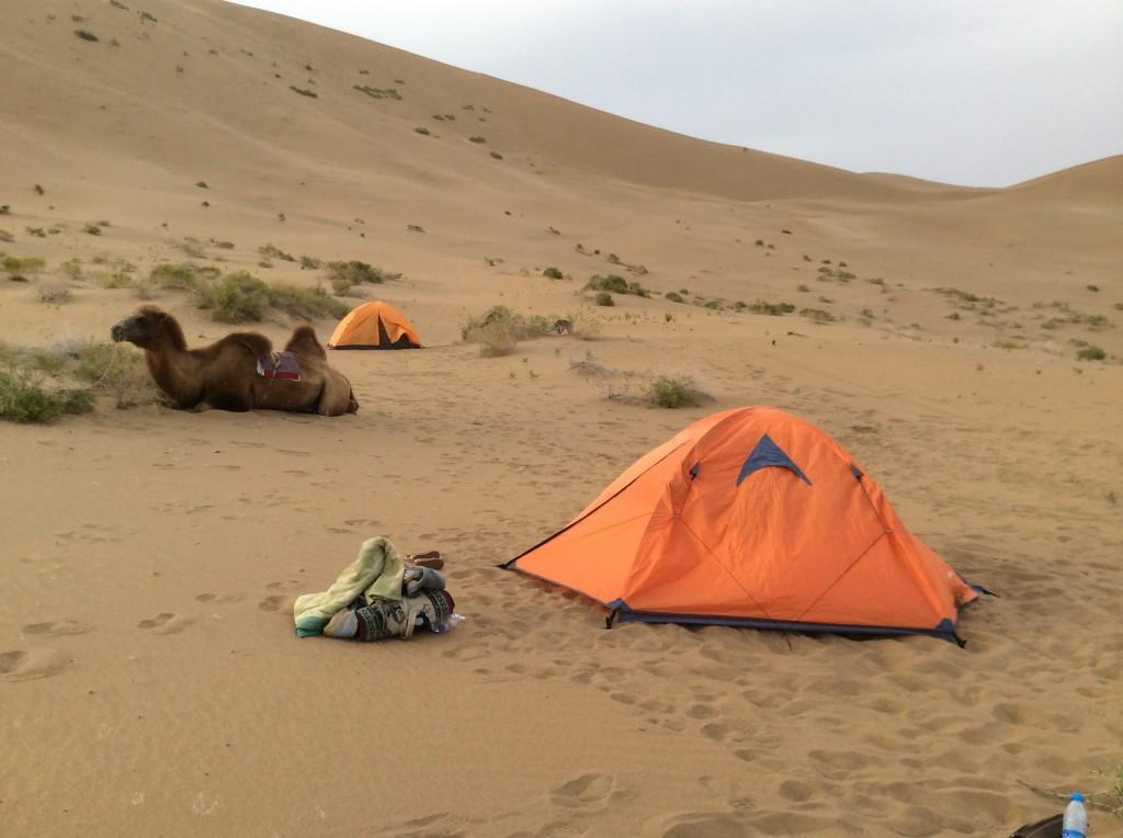 Bivouac désert Gobi