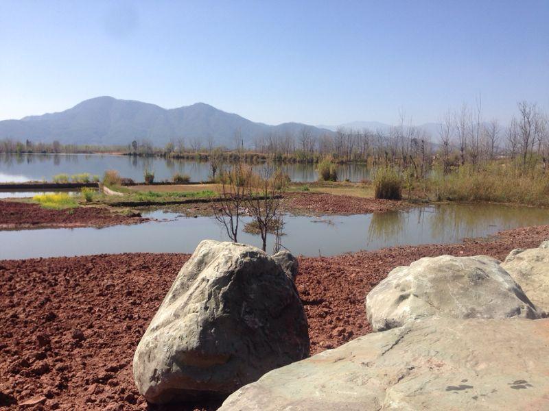 Bord du lac Qionghai