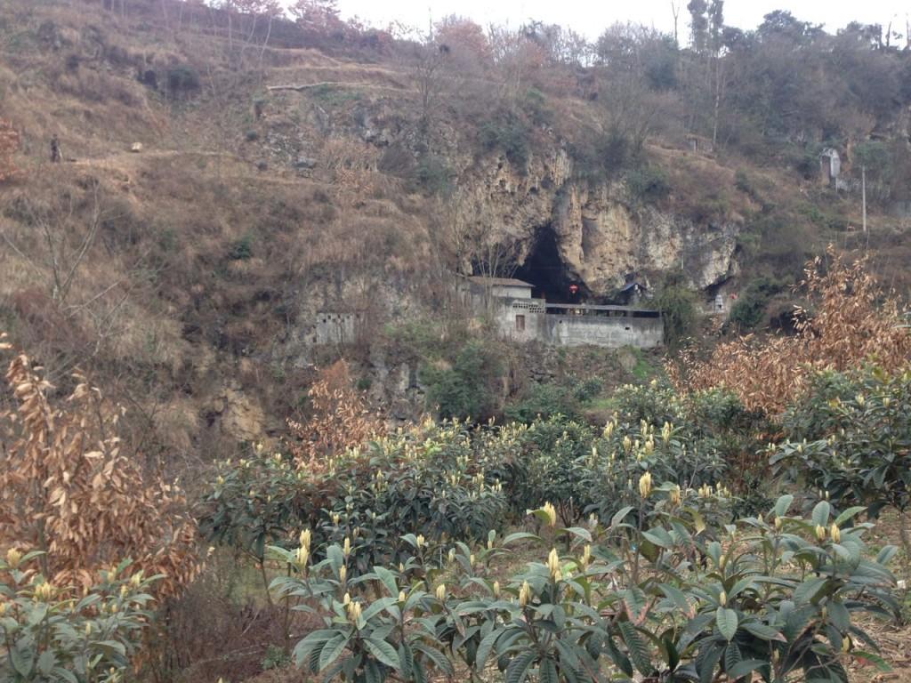 temple de Leishendong Leibo