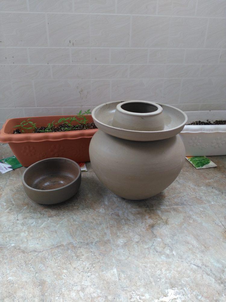 pot joint d'eau légumes lacto fermentés