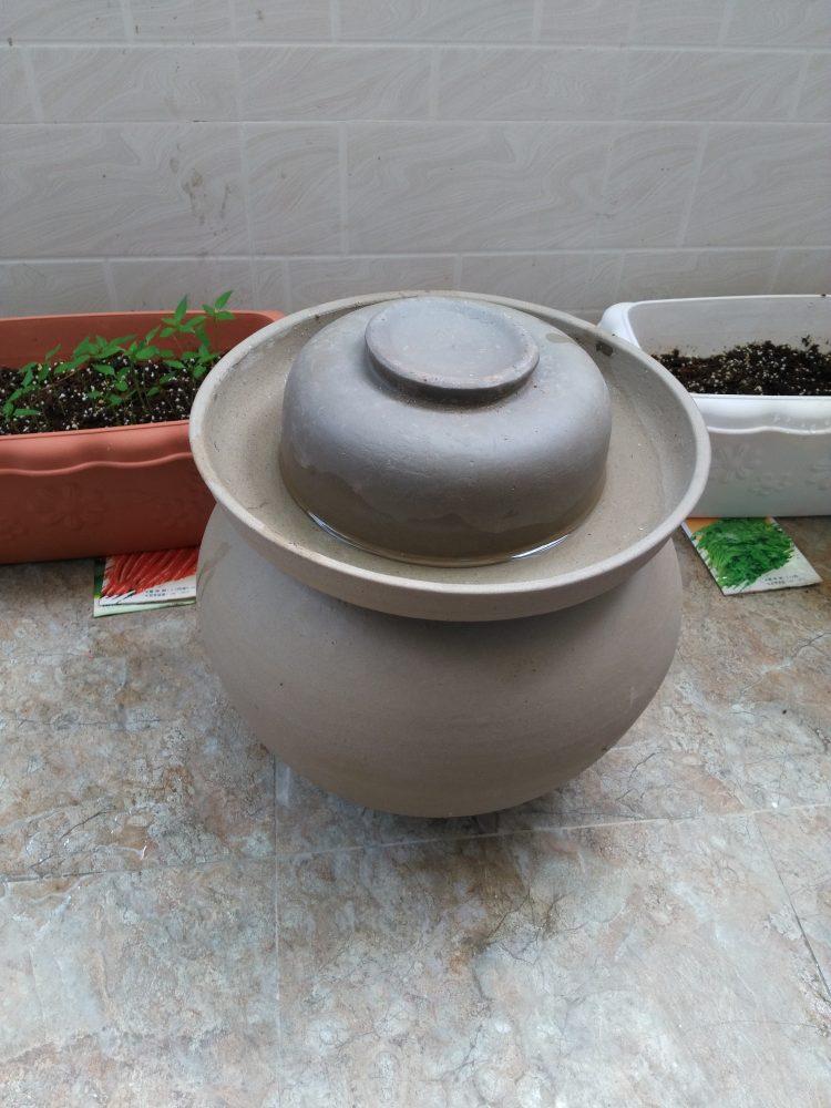 pot à joint d'eau légumes lacto fermentés
